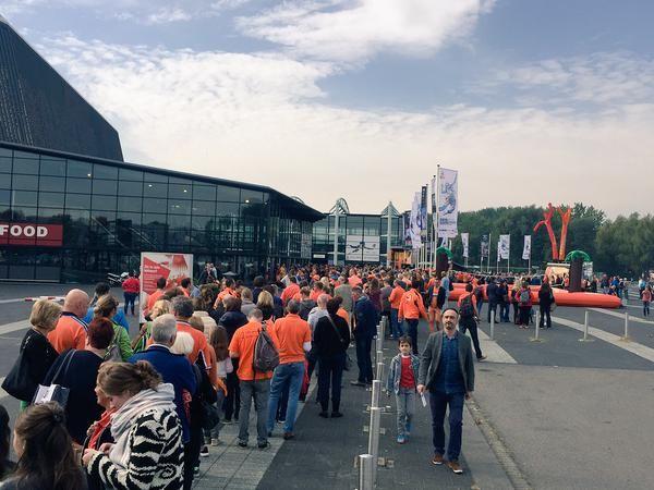 volei fani olanda campionat european