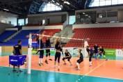 romania volei feminin antrenament ungaria